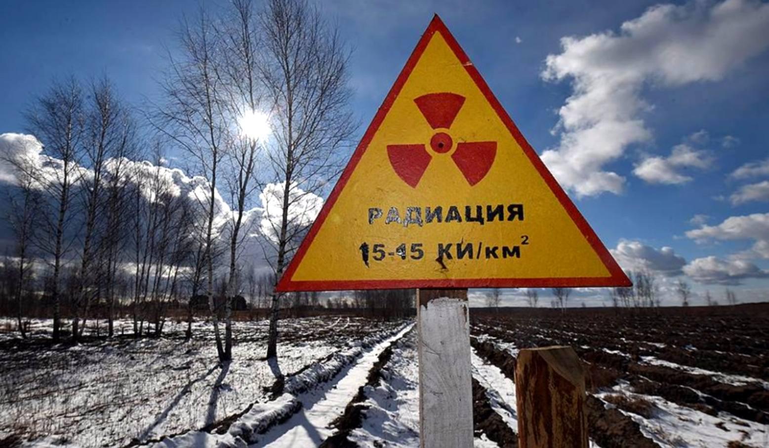 территория заражения чернобыль фото люся отдыхала, она