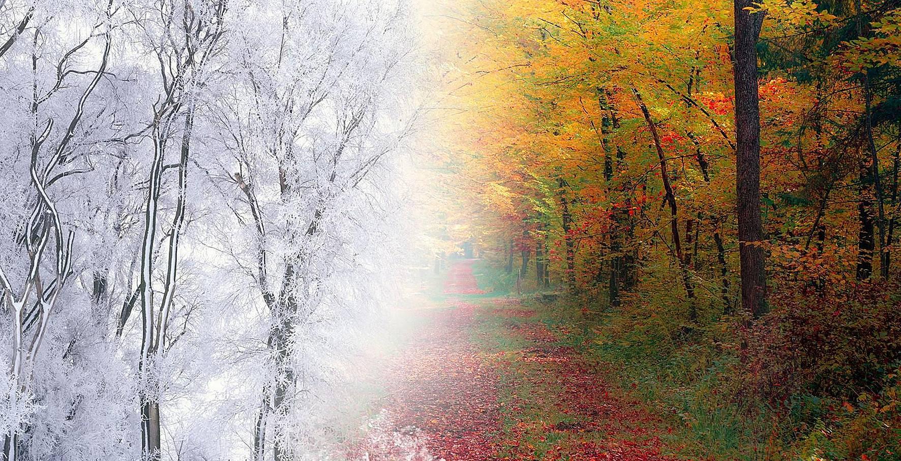 Ноябрь картинки для фона