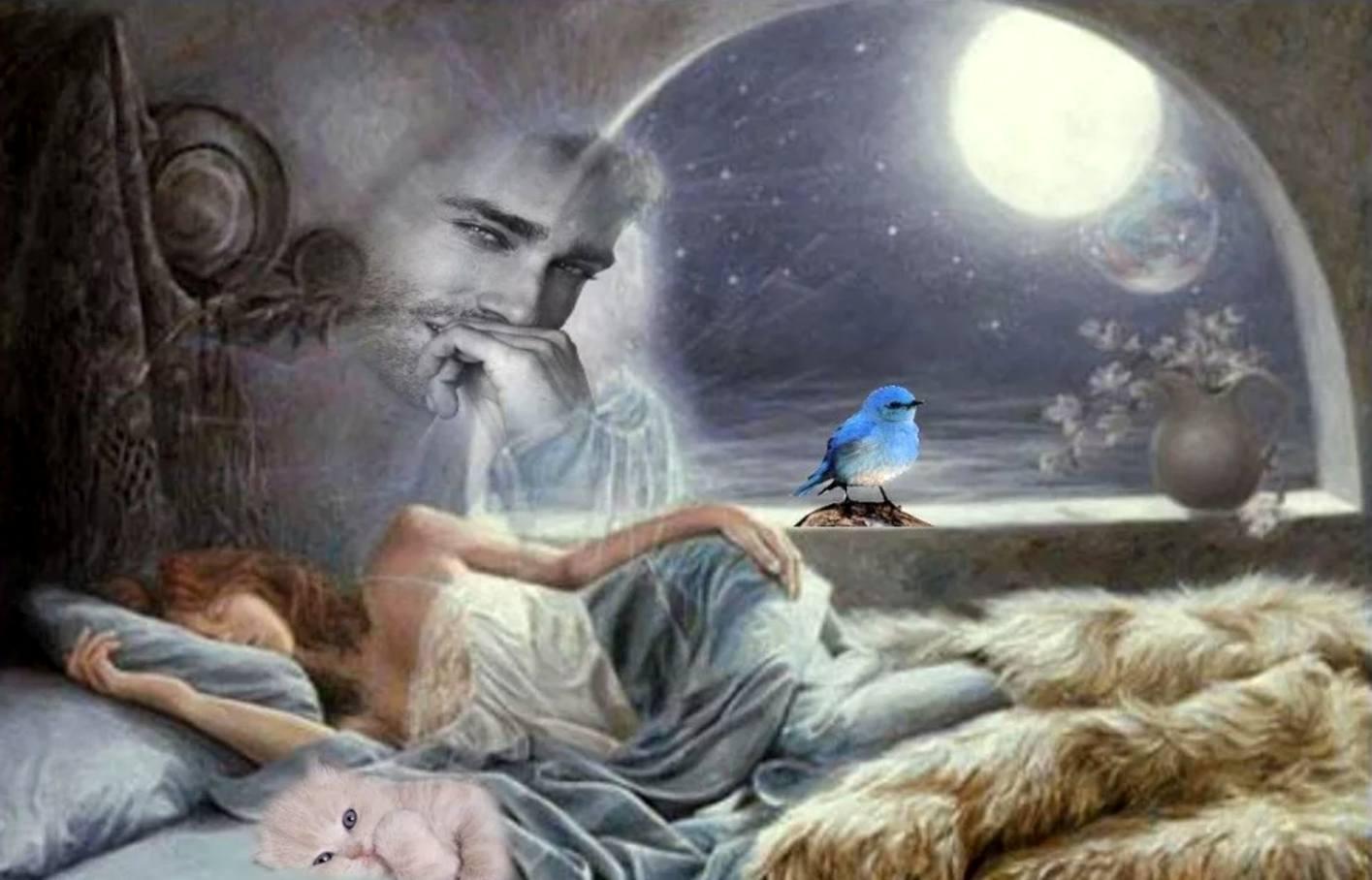 густооблиствленные кустики увидеть свою фотографию во сне для