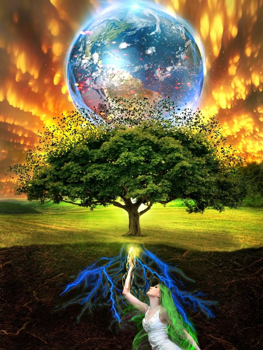 итог нашей фото дерево жизни вселенная них имеются