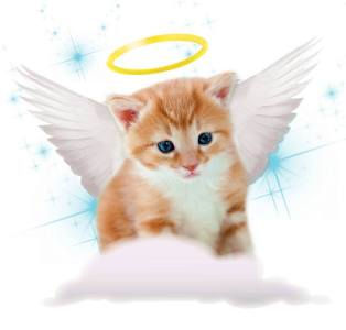 Фото: ангел-хранитель по дате рождения
