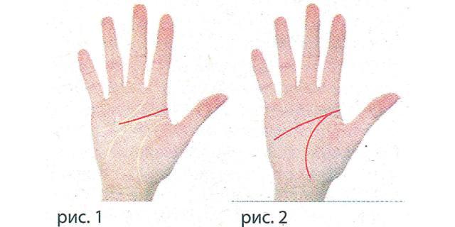 Какие линии руки отвечают за изучение иностранных языков?