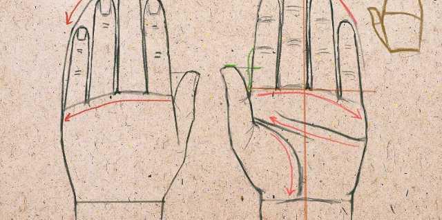 Что означает линия любви на руке?
