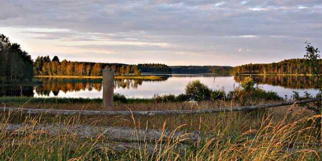 Чудовище озера Бросно в Тверской области