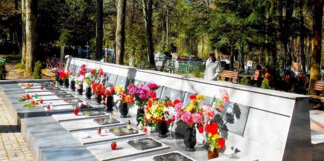 Катастрофа Ан-24 в Светлогорске убившая детей