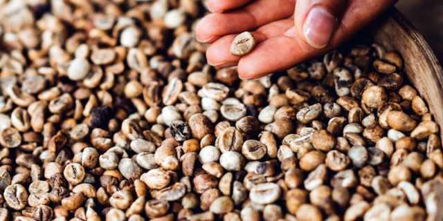 Эффективное гадание на семенах - как узнать будущее?