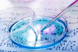 Фото: экспертиза ДНК — интересные факты