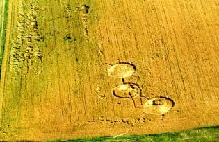 Фото: круги на полях — интересные факты
