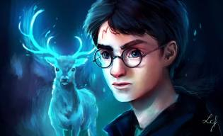 Фото: Гарри Поттер — интересные факты