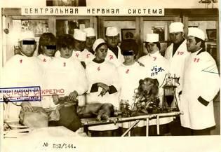 Фото: советский биоробот — бред сивой кобылы