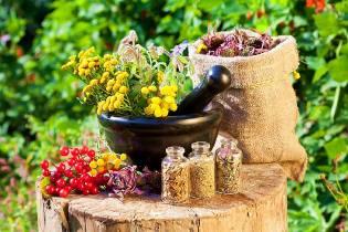 Фото: колдовские травы — как сделать зелье