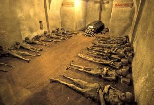 Фото: мумии Брно — интересные факты