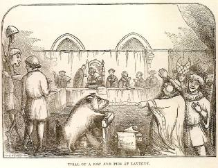 Фото: инквизиция против животных, интересные факты
