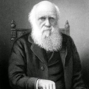 Фото: Чарлз Дарвин, интересные факты