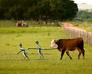 Фото: зачем инопланетяне похищают животных?