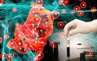 Фото: лекарство от рака — интересные факты