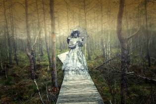 Фото: призраки северных болот — интересные факты