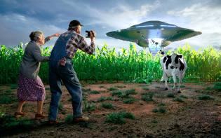 Фото: зачем пришельцы похищают зверей?