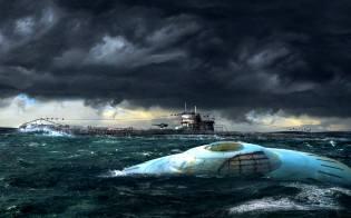Фото: квакеры океана — интересные факты