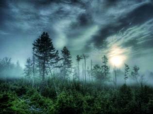 Фото: северная тьма — интересные факты