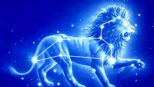 Фото: Лев — гороскоп на сентябрь