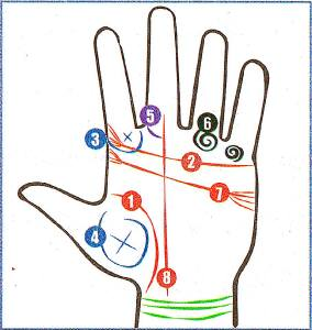 Фото: лёгкая рука — интересные факты