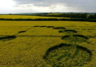 Фото: английские круги на полях, интересные факты