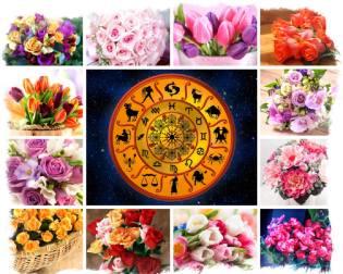 Фото: цветочный гороскоп — интересные факты