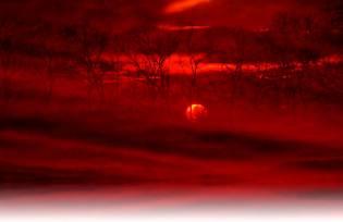 Фото: красная мгла Заполярья — интересные факты