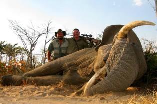 Фото: сафари на слона — интересные факты