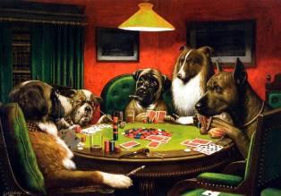 Фото: Собачий покер — интересные факты