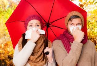 Фото: простуда — лечение, интересные факты