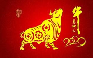 Фото: Бык — восточный календарь