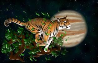 Фото: Тигр — восточный календарь