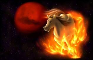 Фото: Лошадь — восточный календарь
