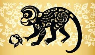 Фото: Обезьяна — восточный календарь