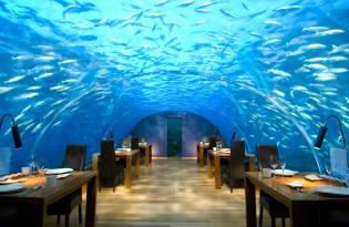 Фото: самые необычные кафе и рестораны