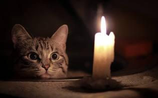 Фото: жизнь без электричества — интересные факты