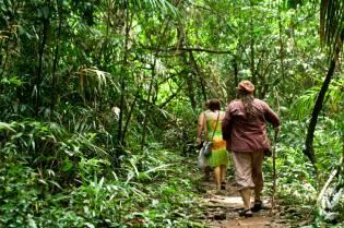 Фото: журналист в джунглях Индии, интересные факты