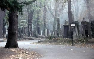 Фото: тайны кладбища — интересные факты
