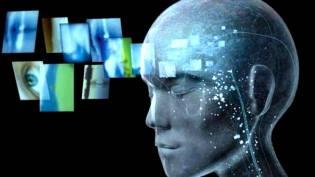 Фото: мозг и сигналы из будущего, интересные факты