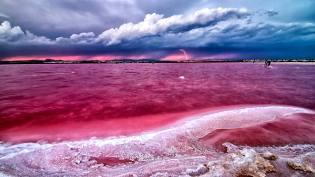 Фото: розовое озеро Ретба — интересные факты