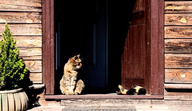 Фото: порог дома — обряды и ритуалы защиты