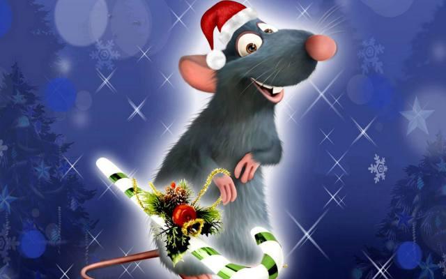 Фото: характеристика года Крысы