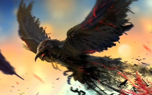 Фото: чёрные вороны Габсбургов — интересные факты