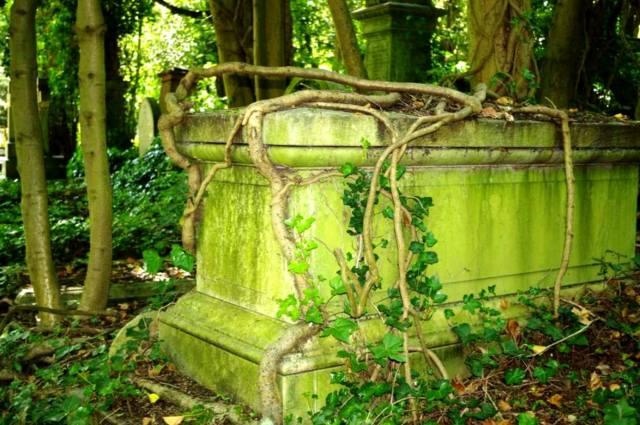 Фото: вампиры кладбища Хайгейт, интересные факты