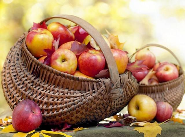 Фото: Яблочный спас и Медовый — интересные факты