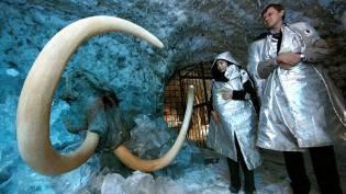 Фото: клонирование мамонта, интересные факты