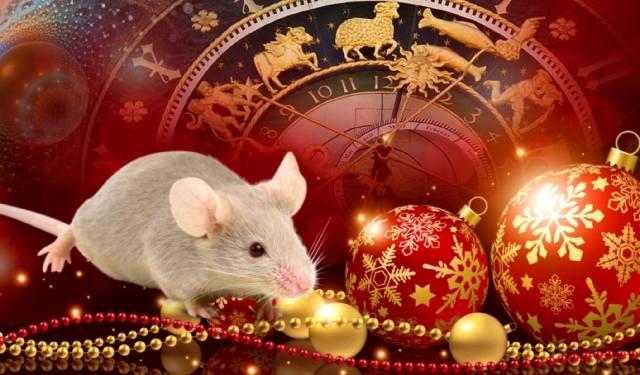 Фото: что принесёт год Белой Крысы?