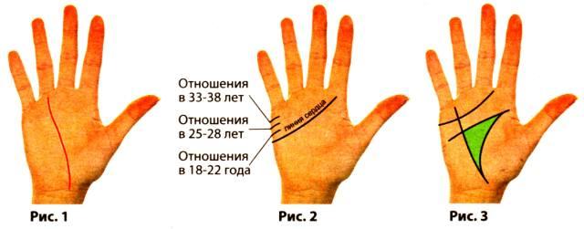 Фото: линии руки — значение в новом году
